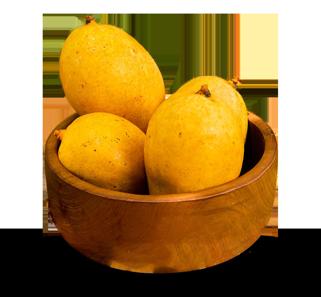 TJC-Mango-bowl-_about-2.png